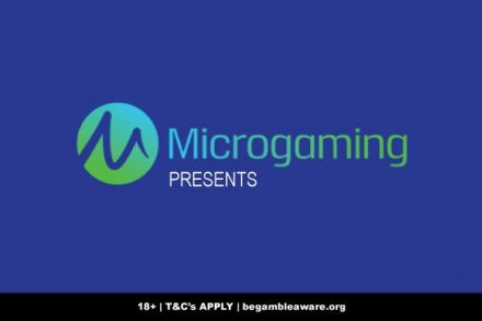 Microgaming Presents Studios & What You Can Expect